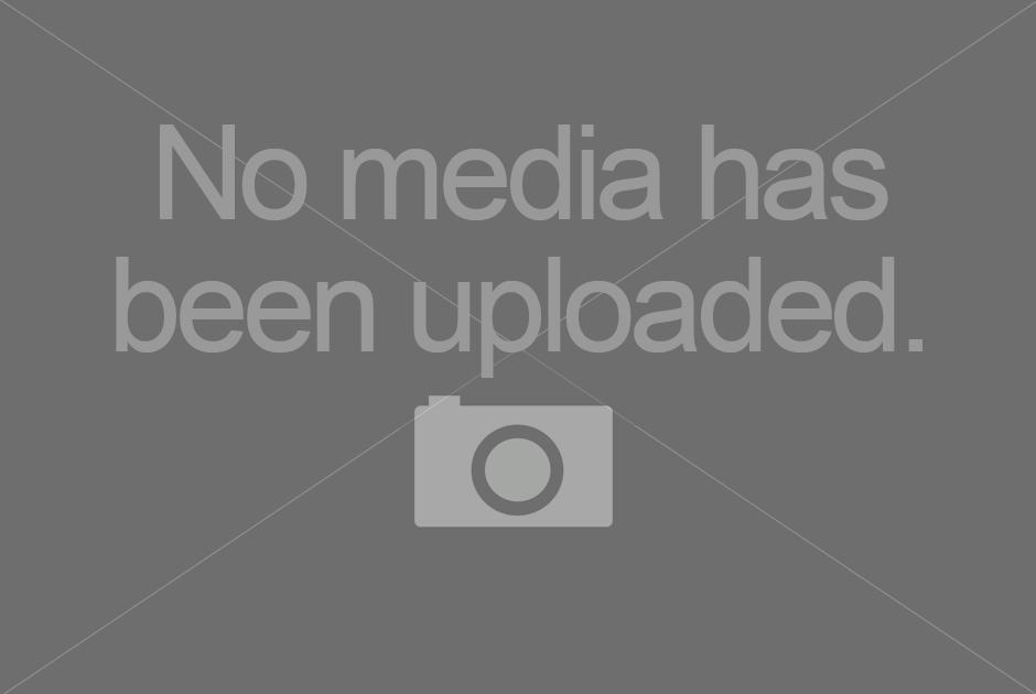 Vegan videos portal